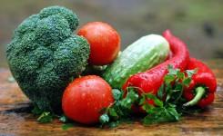 Vitalität steigern – der Stoffwechsel als unterschätzter Faktor