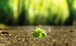 4 Dinge, die ich von meiner Krankheit gelernt habe