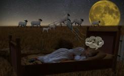 Schlafstörungen natürlich behandeln (inkl. Geheimtipp!)